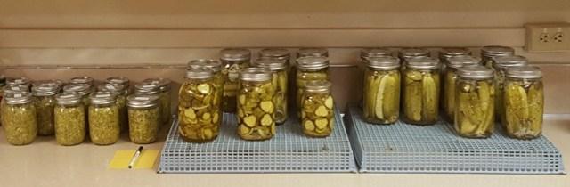 pickles 2016 crop